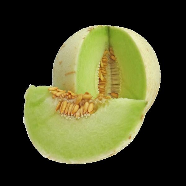 honeydew, melon, fruit