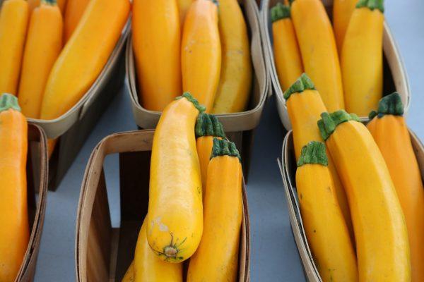 vegetable, zucchini, organic