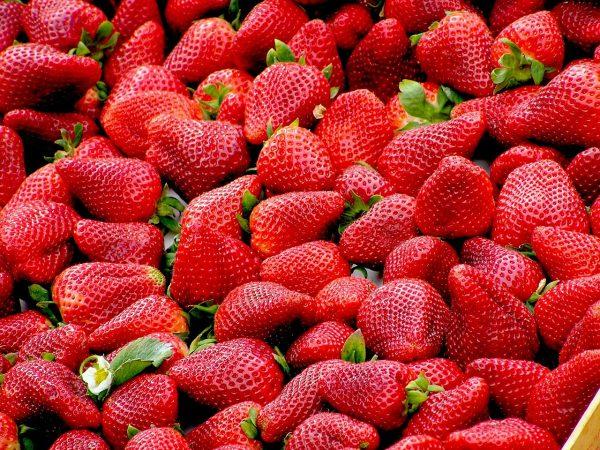 strawberries, fruit, food
