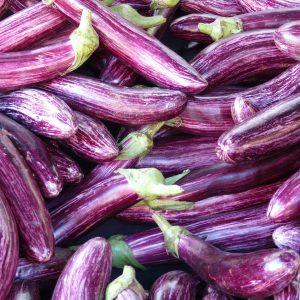 eggplant, mark, purple