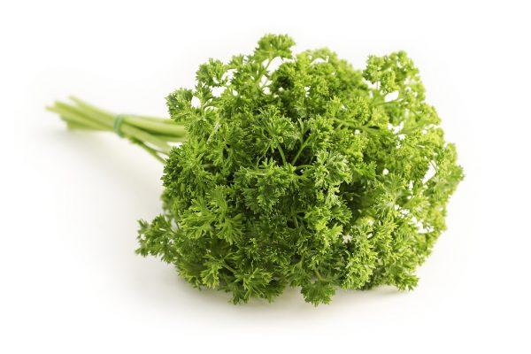 parsley, herb, food